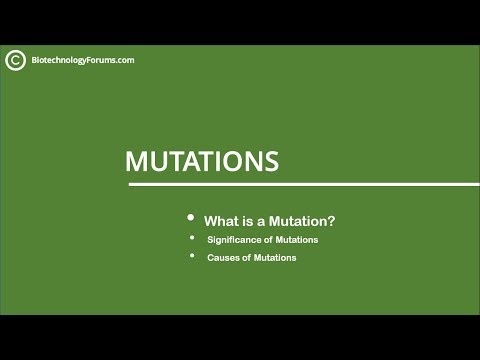 Basics of Mutations | What is a Mutation? Significance and Causes of Mutations