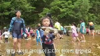 영월 남강캠프에서 캠핑다운 캠핑을 하자.