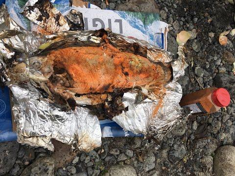 Vedder River Chilliwack BC Fishing. Oct.2019