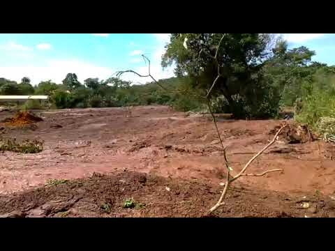Veja como ficou o Rio Paraopeba após rompimento de barragem em Brumadinho
