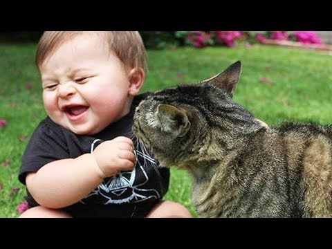 Funny Baby And Cat Fails Moments