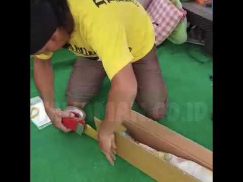 Packing Super Aman Ala Tanaman.co.id