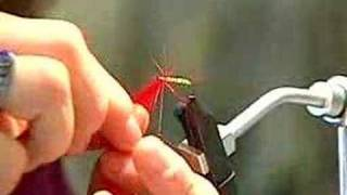 fly tying Thumbnail