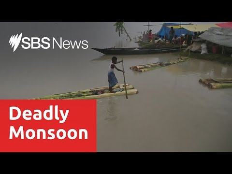 At least 51 killed and millions displaced in Indian floods