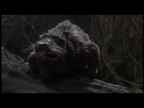 The Princess Bride -RODENTS OF UNUSUAL SIZE (ROUS) - YouTube