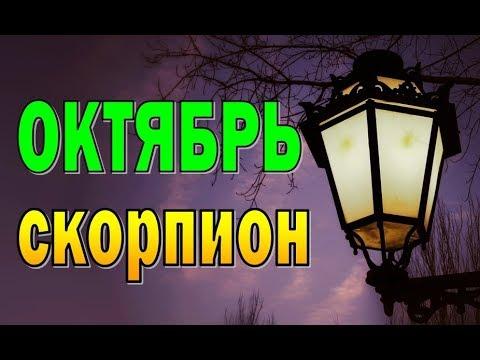 СКОРПИОН ОКТЯБРЬ 2019 (12 домов гороскопа). Таро прогноз гороскоп