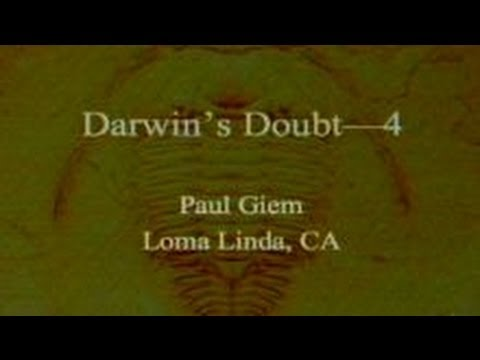 Darwin's Doubt (Part 4) 10-19-2013 by Paul Giem