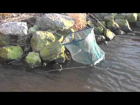 Fishing the Oosterhorn