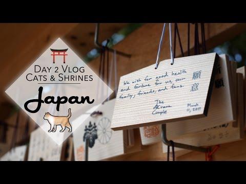 Cat Cafe and Meiji-Jingu shrine vlog plus UFO catchers in Japan!   Crane Couple in Japan