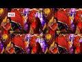 Ashish Pathak Hits Mata Bhajan | तेरी महिमा अपरम पार | Bhojpuri Devi Geet 2017 | Team Film