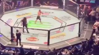 Conor McGregor vs Khabib Team Brawl After UFC 229 / Conor McGregor vs Khabib