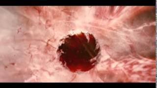 Сумерки. Группа крови