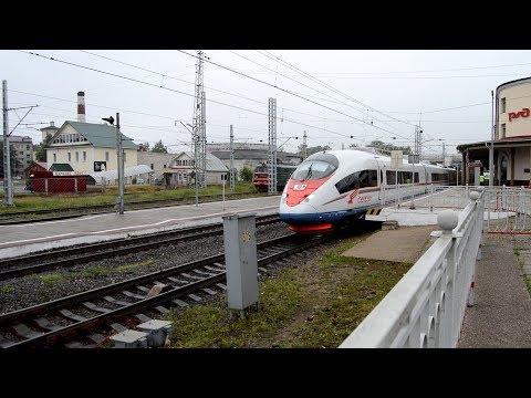 Ловля Сапсанов на станции Бологое-Московское