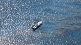 Shocking Aerial Footage and Photography of the Gulf Of Mexico Oil Spill