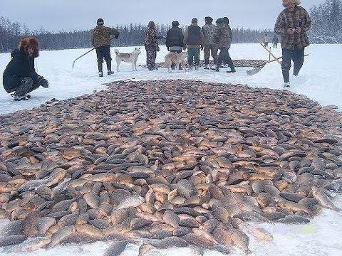 Рыбалка зимой. Лов