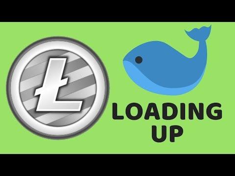 Litecoin Whales Loading Up - LTC Rich List Movement