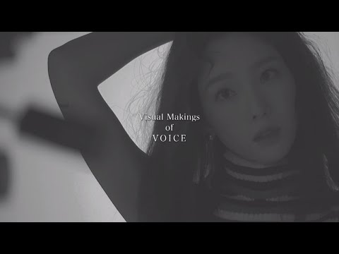 TAEYEON 1st Mini Album『VOICE』初回限定盤B(Visual Edition)収録DVDダイジェスト