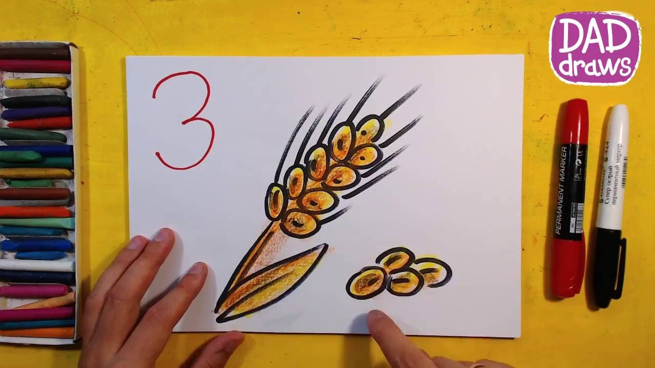 small resolution of how to draw the ears of wheat art for kids