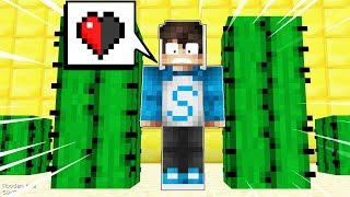2 NOOBS SE TROLLEAN A MEDIO CORAZÓN CON CACTUS! 💔🌵 MINECRAFT FIND THE BUTTON 1.11.2 CON MIKECRACK