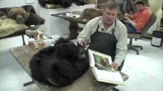 How to Rug a Black Bear