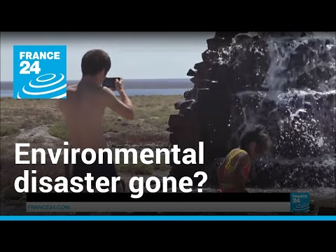 Video: Dried-up Aral Sea springs back to life