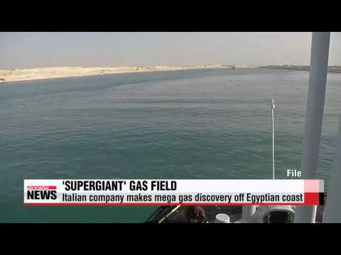 Italian company makes mega gas discovery off Egyptian coast   이집트 해역서 지중해 최대 천연가