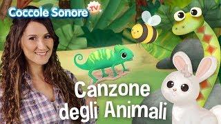 La canzone degli animali - Balliamo con Greta - Canzoni per bambini di Coccole Sonore