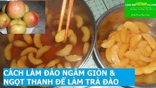 🌿MTVV🌿 ||CÁCH LÀM ĐÀO NGÂM GIÒN & NGỌT THANH ĐỂ LÀM TRÀ ĐÀO - Làng quê Việt Nam village
