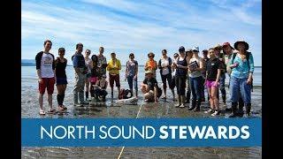 Citizen science in action: North Sound Stewards