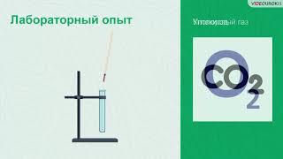 Видеоурок «Качественные реакции в химии»
