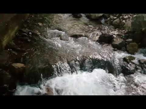 Aşk Garibana Zor | Yeşil Deniz