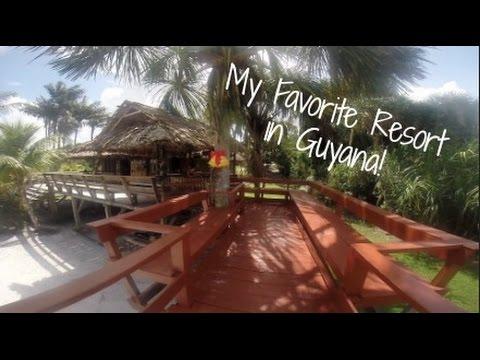 Arrowpoint Travel Vlog