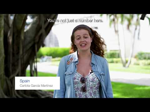 Students tell us why they chose Lynn