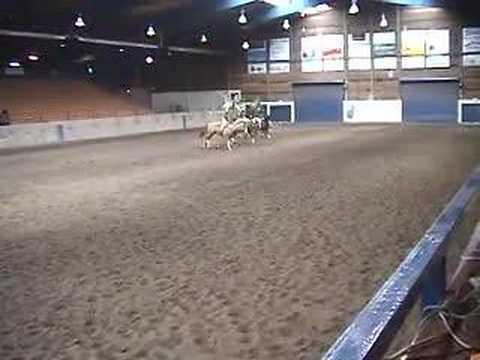 Rogue River High School Equestrian Team