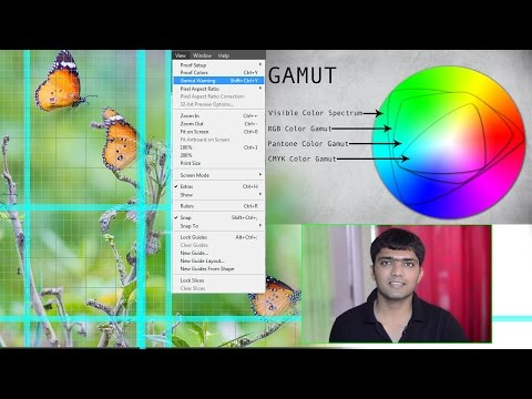 #97 Guide, Snap, Smart Guides, Grid, Gamut Warning, Proof Colors/setup, In Adobe Photoshop