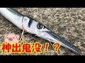 目の前で細長い魚が喰ってきた!【ライトショアジギング】