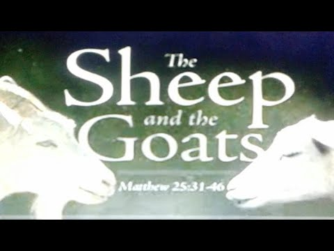 Christian Live Chat Welcome! Matthew 25:31-46 Who Is A Goat?