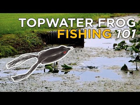 Top 5 Frog Fishing Tips You NEED To Catch More Bass