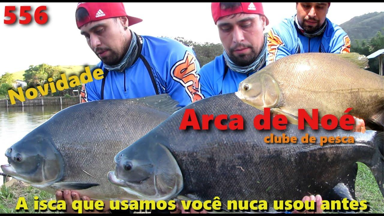 Arca de Noé - Mais uma nova opção de pesca - Fishingtur na TV 556