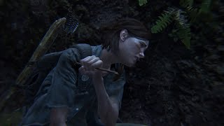 The Last Of Us 2 Stealth Kills (The Seraphites)