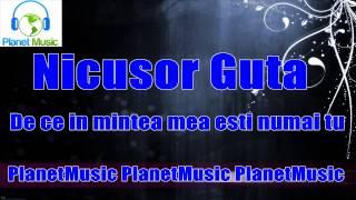 Nicusor Guta - De ce in mintea mea esti numai tu