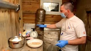 Инокуляция субстрата в домашних условиях, как готовить грибной блок