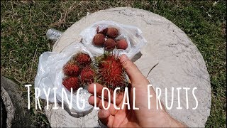 Exotic fruits of Asia | Trying local fruits | Follow Mike
