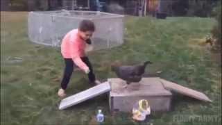 Дресированная курица Приколы