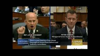 Gohmert Grills Strzok on Bias & Emails Sent To Unauthorized Source