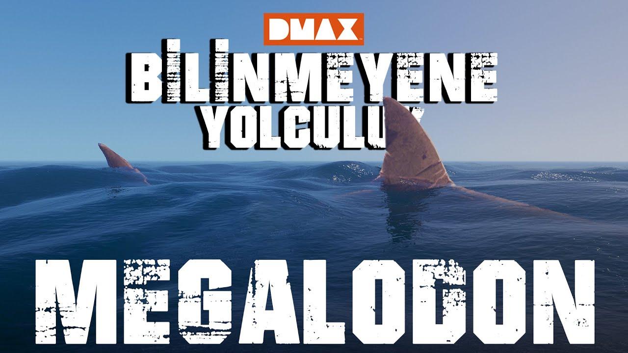 Bilinmeyene Yolculuk: Megalodon