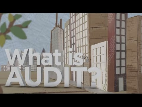 What Is Audit?