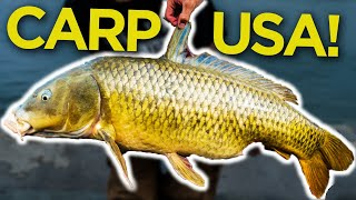 CARP FISHING ACROSS THE POND - Carl and Alex Fishing - 2015