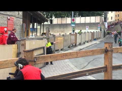 Video Original completo del Toro Curioso 2015