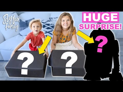 HUGE SURPRISE REVEAL!! | Slyfox Family